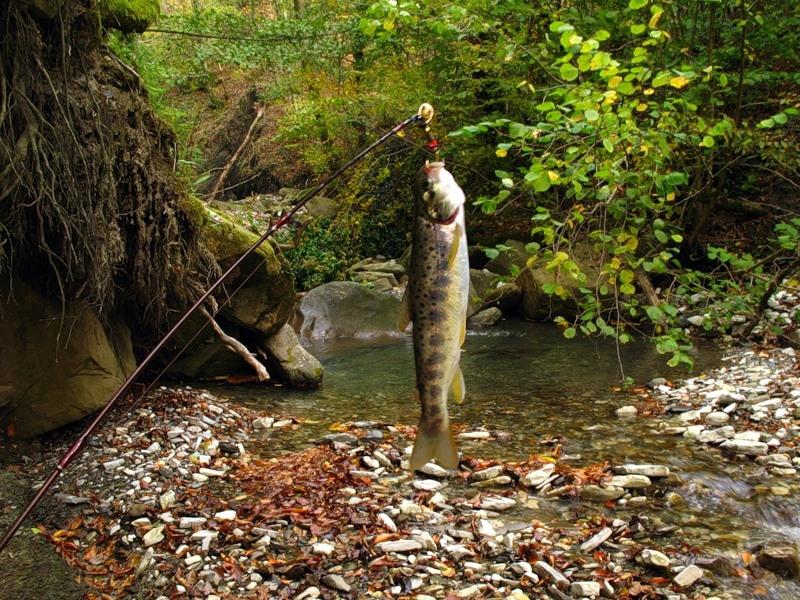 рыбалка на горных реках краснодарского края