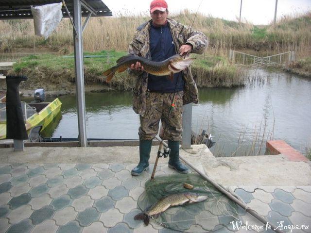 крупная рыбалка в краснодаре