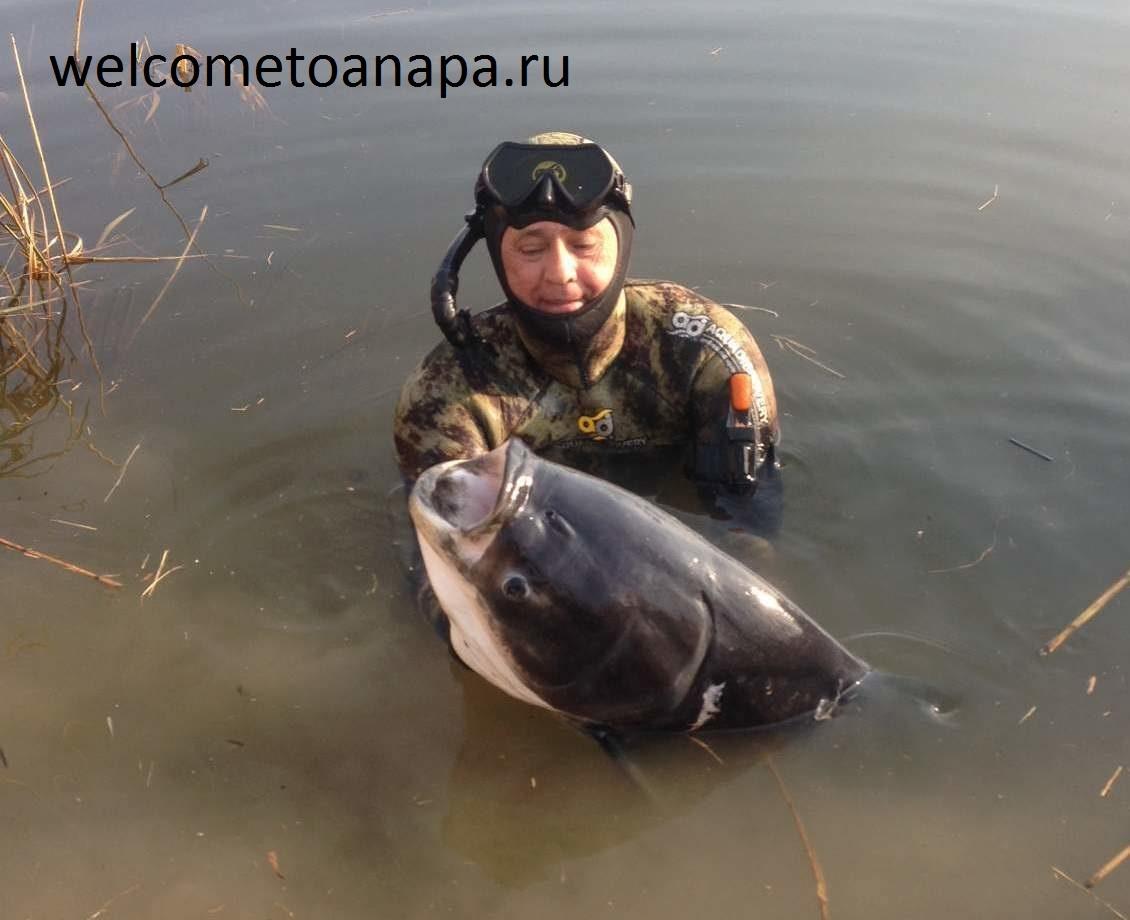 рыбак краснодарский край