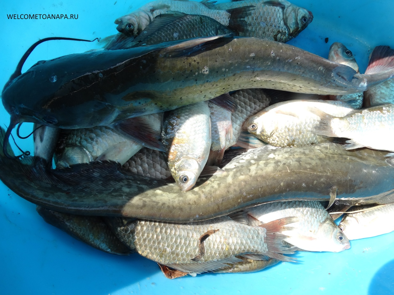 Что подарить мужчине если он рыбак и охотник